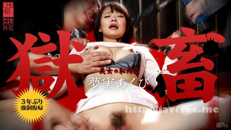カリビアンコム 013016-086 夢実あくび 獄畜17 〜美女の恥肉塊〜